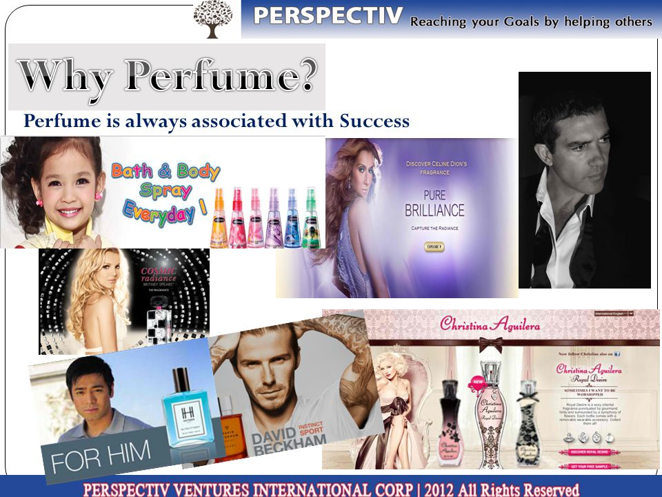 PERSPECTIV Parfums contains ALOE VERA to moisturize and makes your skin Healthier, Softer Smoother PERSPECTIV Parfums uses only imported FINE FRAGRANCE OIL
