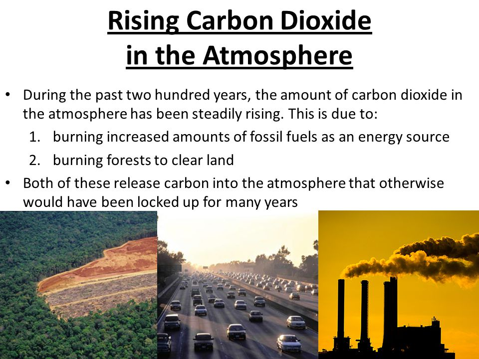 Rising Carbon Dioxide in the Atmosphere During the past two hundred years, the amount of carbon dioxide in the atmosphere has been steadily rising.