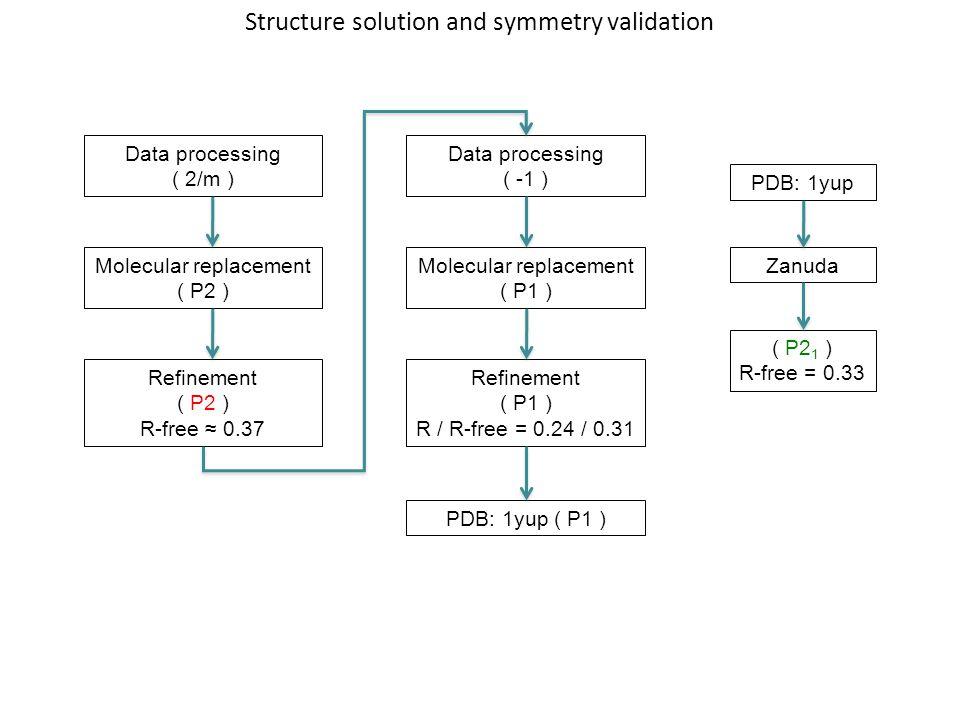 Data processing ( 2/m ) Molecular replacement ( P2 ) Refinement ( P2 ) R-free ≈ 0.37 Data processing ( -1 ) Molecular replacement ( P1 ) Refinement (