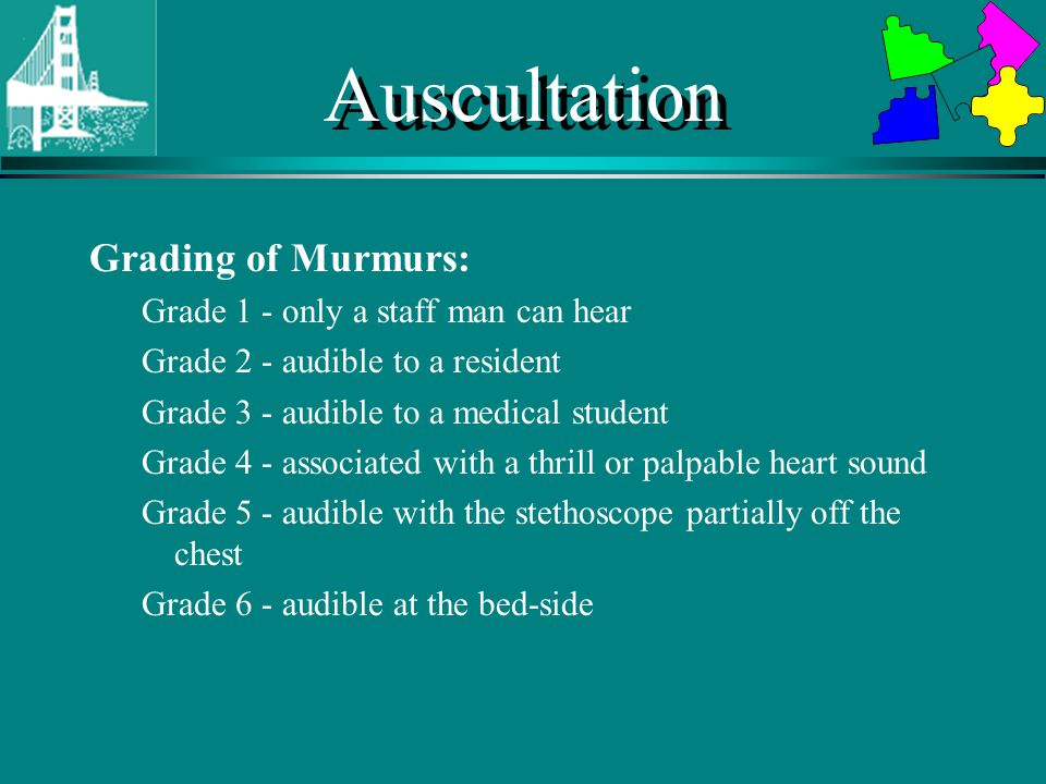 Auscultation Left Sternal Border Listen for early diastolic murmurs (AR/PR) Press firmly with diaphragm Listen upright with forced expiration Listen on hands and knees