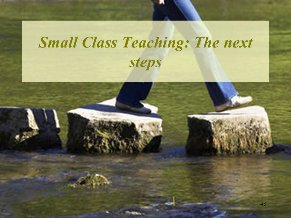 Small Class Teaching: The next steps 48