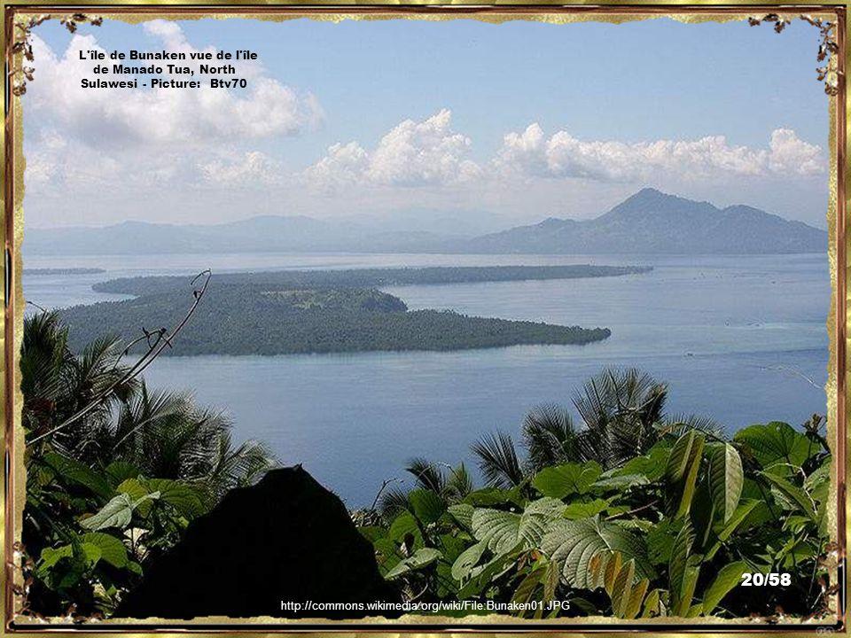 http://commons.wikimedia.org/wiki/File:Manado_city_Manado_Bay.JPG Manado Bay & Manado City, North Sulawesi - Picture: Sakurai Midori 19/58