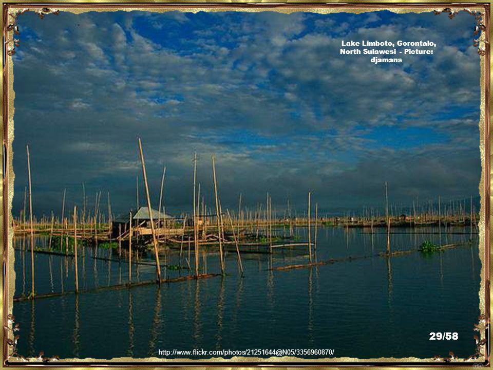 http://en.wikipedia.org/wiki/File:Gorontalo-Kwandangarea-Indonesia-cloudyday.jpg Kwandang Area, Gorontalo, North Sulawesi - Picture: Achmad Rabin Tiam 28/58