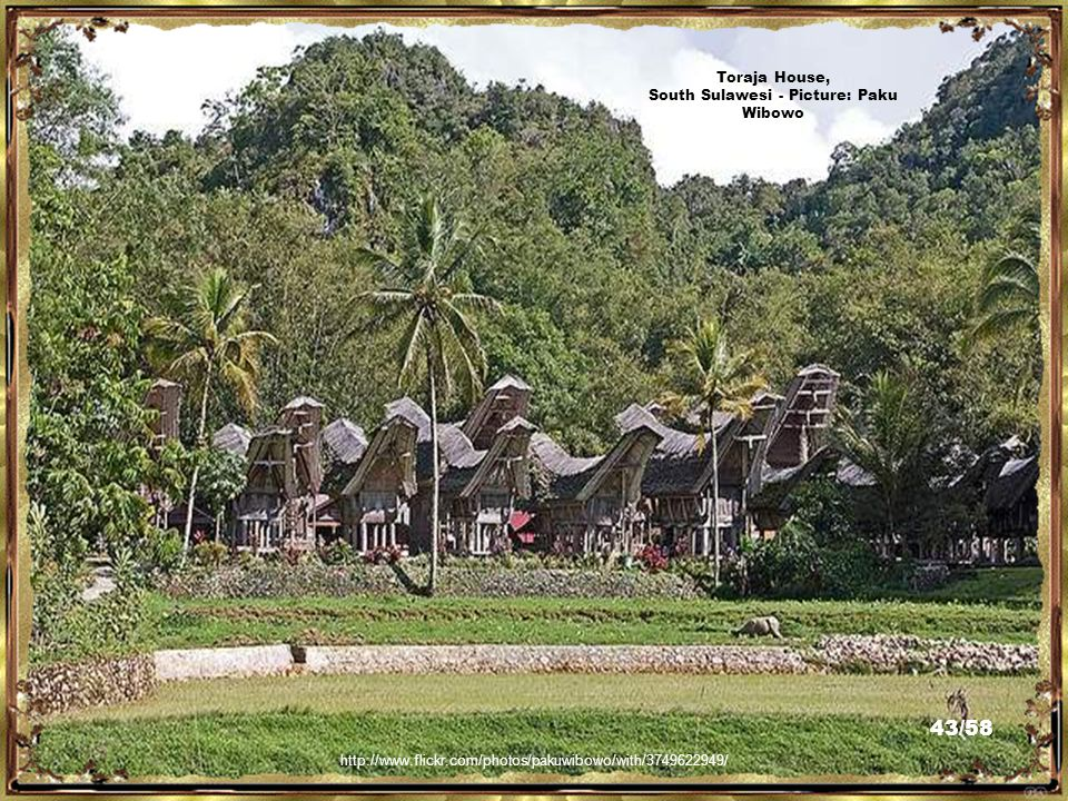 Tongkonan Hotel, South Sulawesi - Picture:Wibowo Rusli http://www.flickr.com/photos/psychovivaldi/3767959145/ 42/58