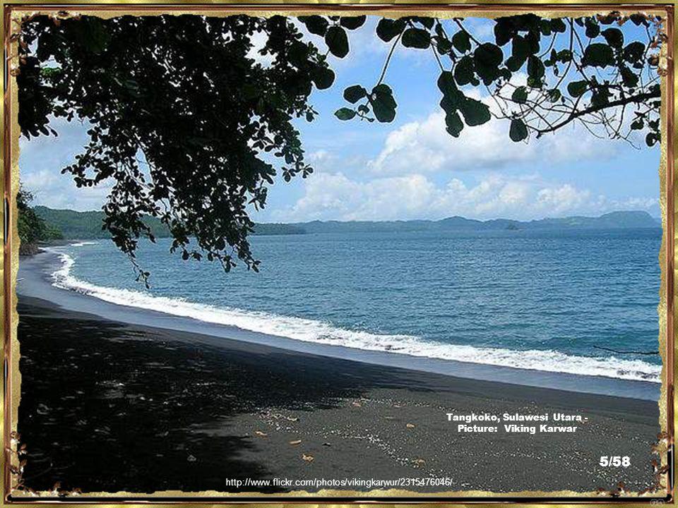 http://media.photobucket.com/image/sulawesi/Ggeorge3021/Alan%20Singapore/Sulawesi.jpg o=39 Sulawesi - Picture: Ggeorge3021 4/58