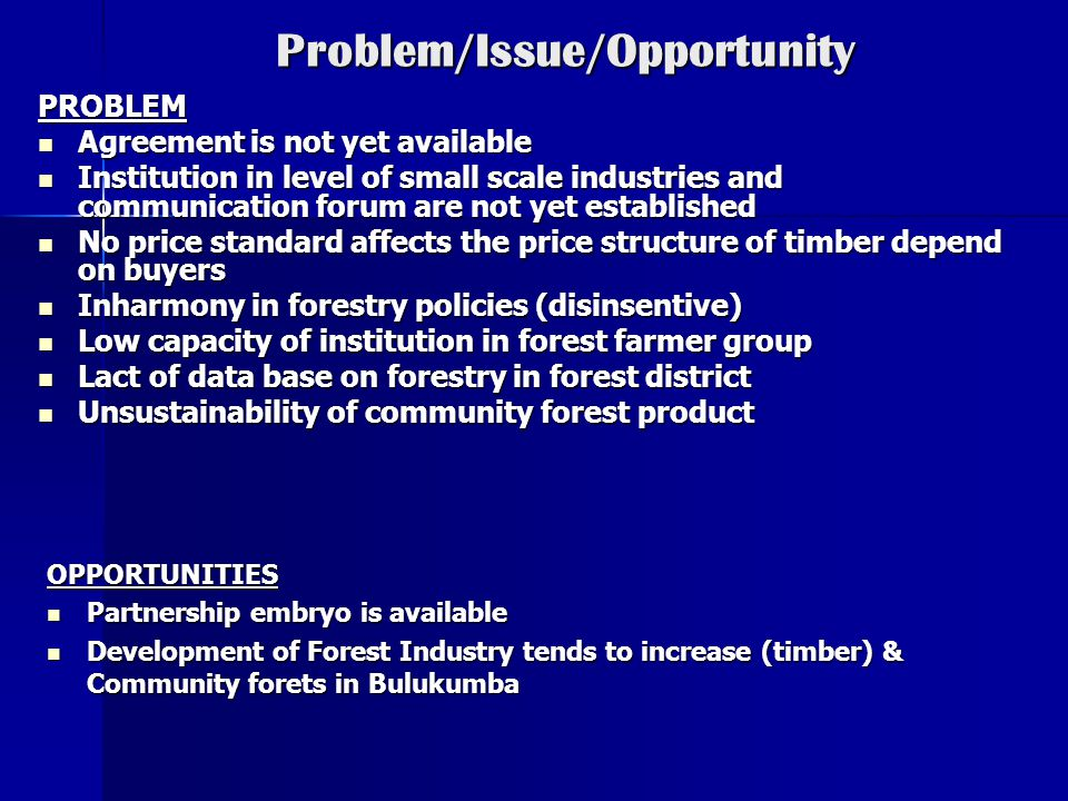 Problem/Issue/Opportunity PROBLEM Agreement is not yet available Agreement is not yet available Institution in level of small scale industries and communication forum are not yet established Institution in level of small scale industries and communication forum are not yet established No price standard affects the price structure of timber depend on buyers No price standard affects the price structure of timber depend on buyers Inharmony in forestry policies (disinsentive) Inharmony in forestry policies (disinsentive) Low capacity of institution in forest farmer group Low capacity of institution in forest farmer group Lact of data base on forestry in forest district Lact of data base on forestry in forest district Unsustainability of community forest product Unsustainability of community forest product OPPORTUNITIES Partnership embryo is available Partnership embryo is available Development of Forest Industry tends to increase (timber) & Community forets in Bulukumba Development of Forest Industry tends to increase (timber) & Community forets in Bulukumba