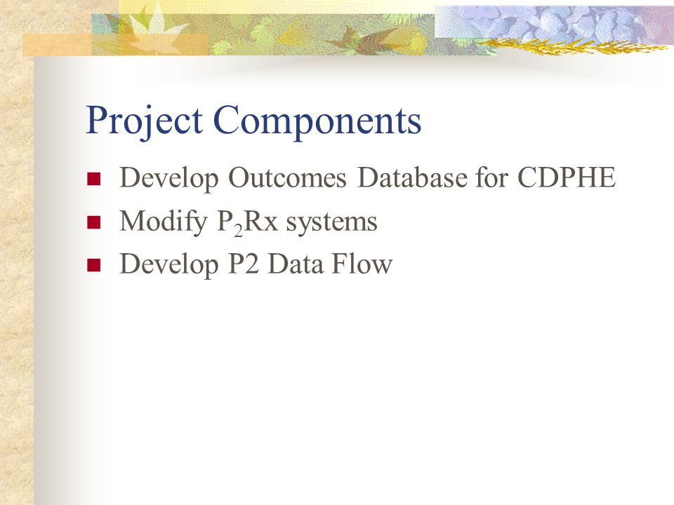 Current Accomplishments Designed Framework Designed Framework Developed a Data Dictionary for a set of core metrics – Behavioral, Activity and Outcome Developed a Data Dictionary for a set of core metrics – Behavioral, Activity and Outcome MOA with P2 programs – 35 signatories, 31 states MOA with P2 programs – 35 signatories, 31 states Programmed regional aggregation modules that reside at P2Rx Centers Programmed regional aggregation modules that reside at P2Rx Centers