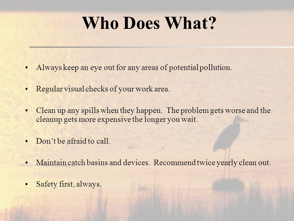 Who Does What. Always keep an eye out for any areas of potential pollution.