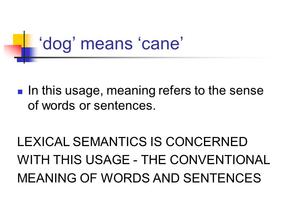 'dog' means 'cane' In this usage, meaning refers to the sense of words or sentences.