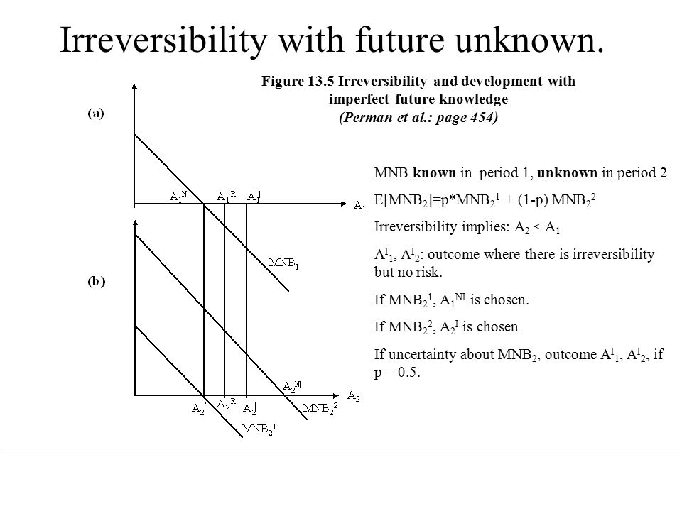 Figure 13.5 Irreversibility and development with imperfect future knowledge (Perman et al.: page 454) Irreversibility with future unknown.