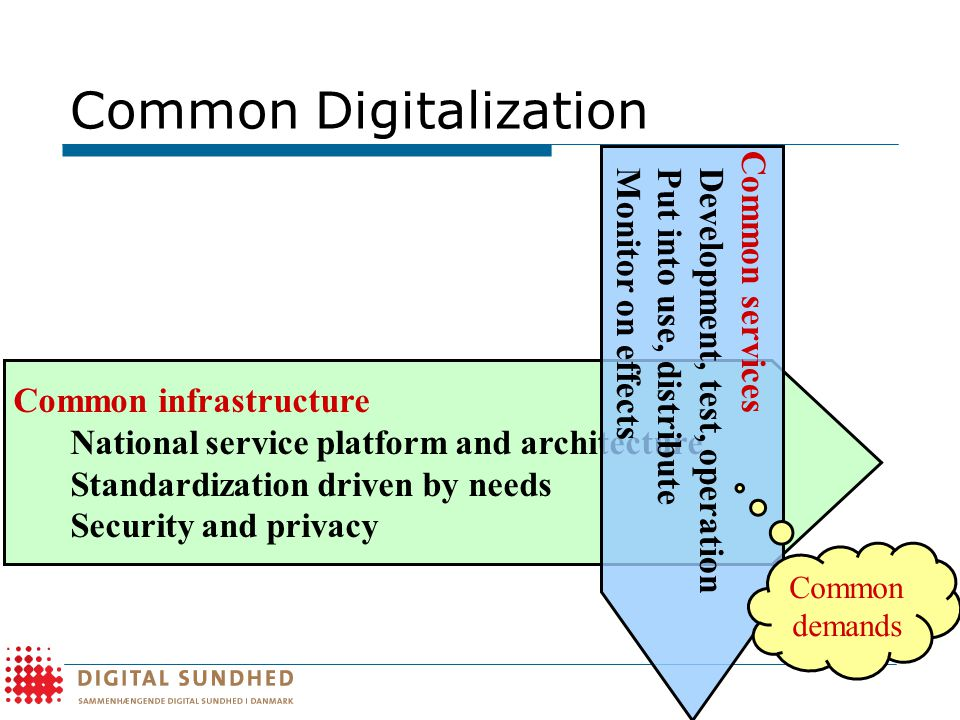 Common Digitalization Common infrastructure National service platform and architecture Standardization driven by needs Security and privacy Common services Development, test, operation Put into use, distribute Monitor on effects Common demands