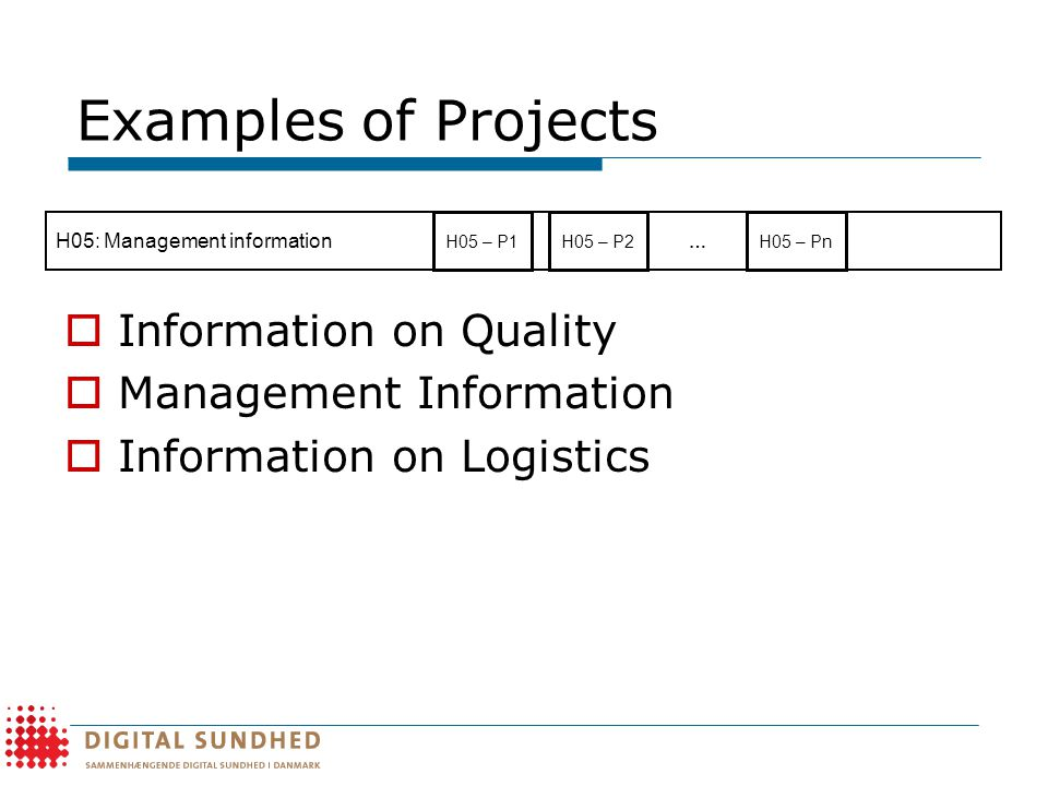 Examples of Projects  Information on Quality  Management Information  Information on Logistics H05: Management information H05 – P1H05 – Pn … H05 – P2