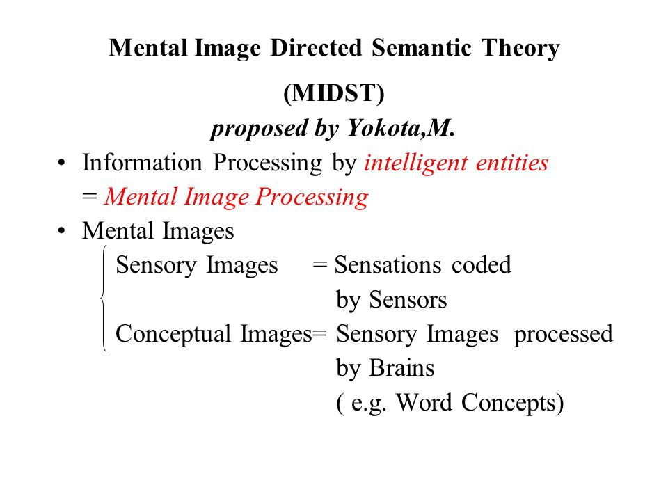 Mental Image Directed Semantic Theory (MIDST) proposed by Yokota,M.