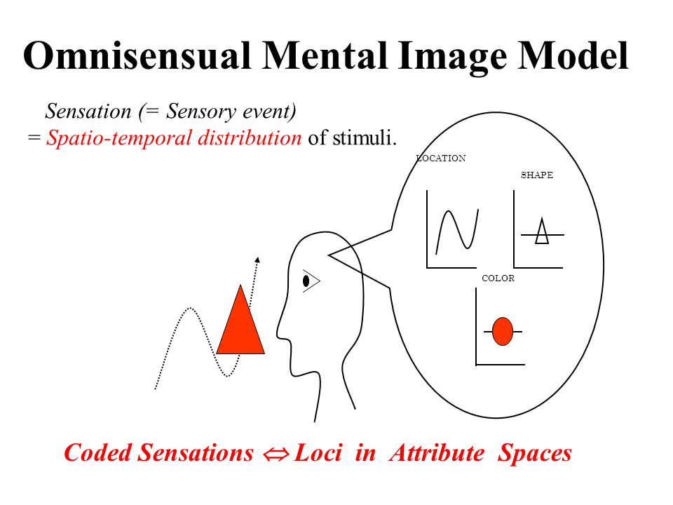 LOCATION SHAPE COLOR Omnisensual Mental Image Model Coded Sensations  Loci in Attribute Spaces Sensation (= Sensory event) = Spatio-temporal distribution of stimuli.