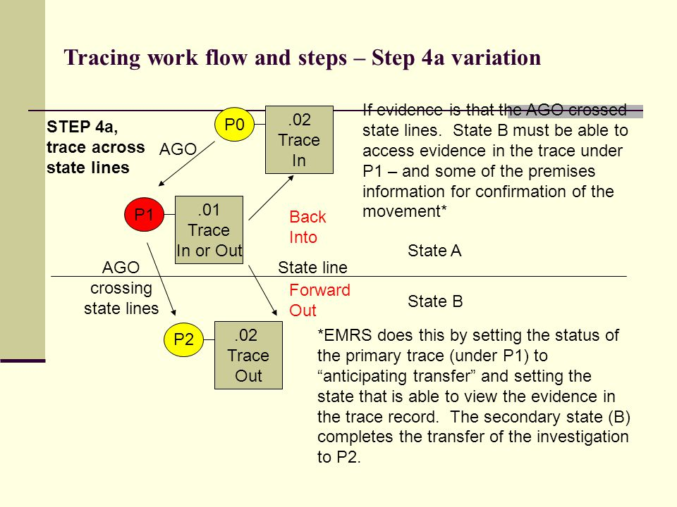 .01 Trace In or Out State A P1 STEP 4a, trace across state lines Tracing work flow and steps – Step 4a variation.02 Trace In P0.02 Trace Out P2 AGO AG