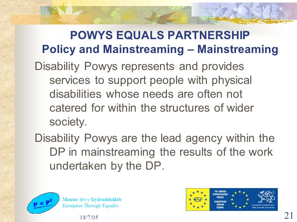 Menter drwy Gydraddoldeb Enterprise Through Equality 18/7/05 21 POWYS EQUALS PARTNERSHIP Policy and Mainstreaming – Mainstreaming Disability Powys represents and provides services to support people with physical disabilities whose needs are often not catered for within the structures of wider society.