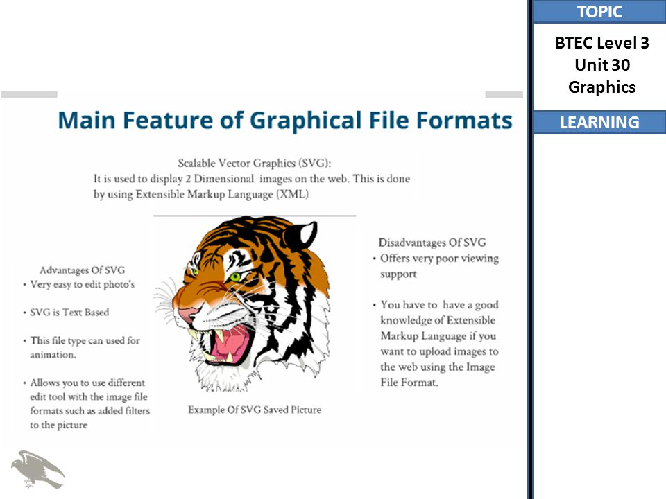 TOPIC LEARNING BTEC Level 3 Unit 30 Graphics File Handling What Is File Management or File Handling It is making sure that converted files; file sizes; file formats eg jpg, bmp are in correct format in your folder structure Always name your files properly Always setup folder structures that help you find your work