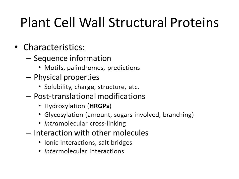 Plant Cell Wall Structural Proteins Characteristics: – Sequence information Motifs, palindromes, predictions – Physical properties Solubility, charge, structure, etc.