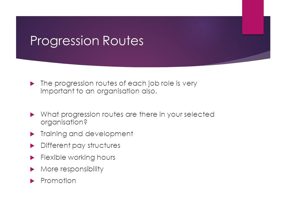Progression Routes  The progression routes of each job role is very important to an organisation also.  What progression routes are there in your se