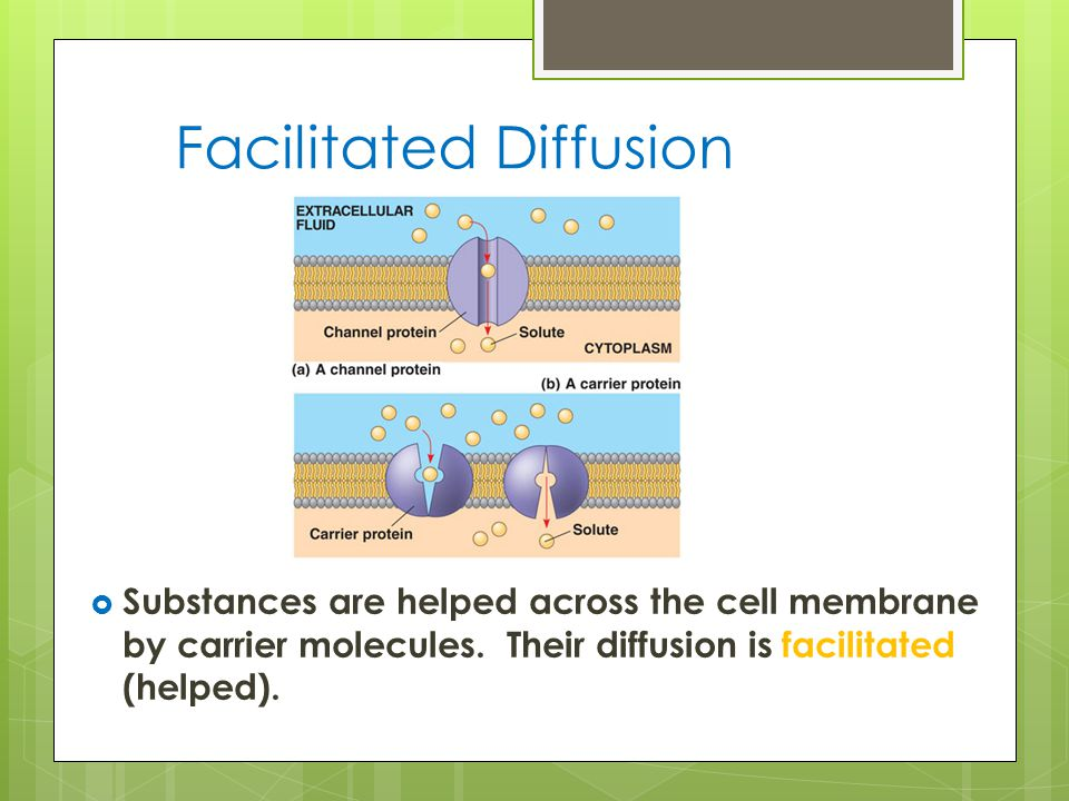 Facilitated Diffusion  Substances are helped across the cell membrane by carrier molecules.