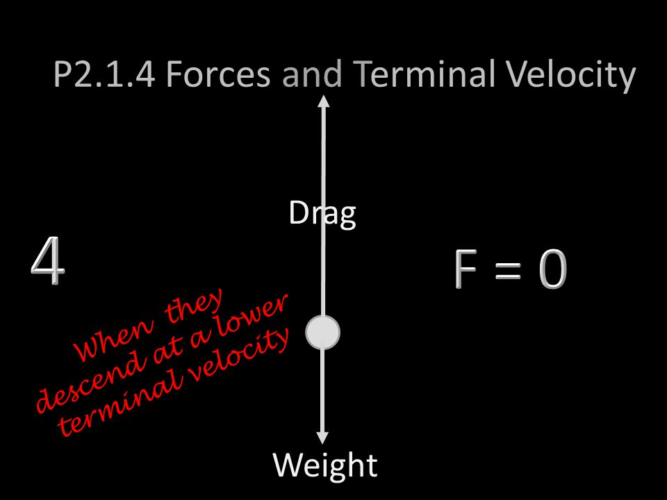 Weight P2.1.4 Forces and Terminal Velocity Drag When they descend at a lower terminal velocity