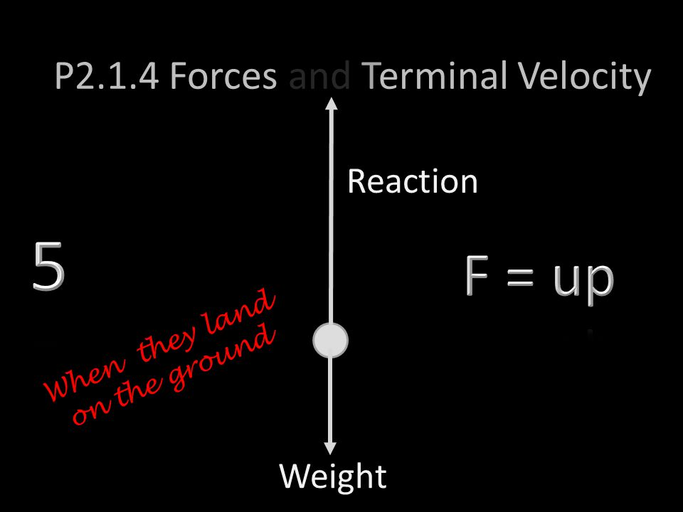Weight P2.1.4 Forces and Terminal Velocity Reaction When they land on the ground