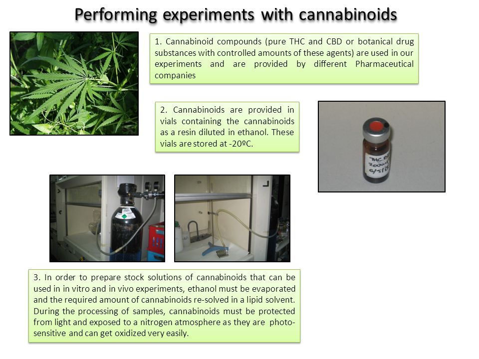 2. Cannabinoids are provided in vials containing the cannabinoids as a resin diluted in ethanol.