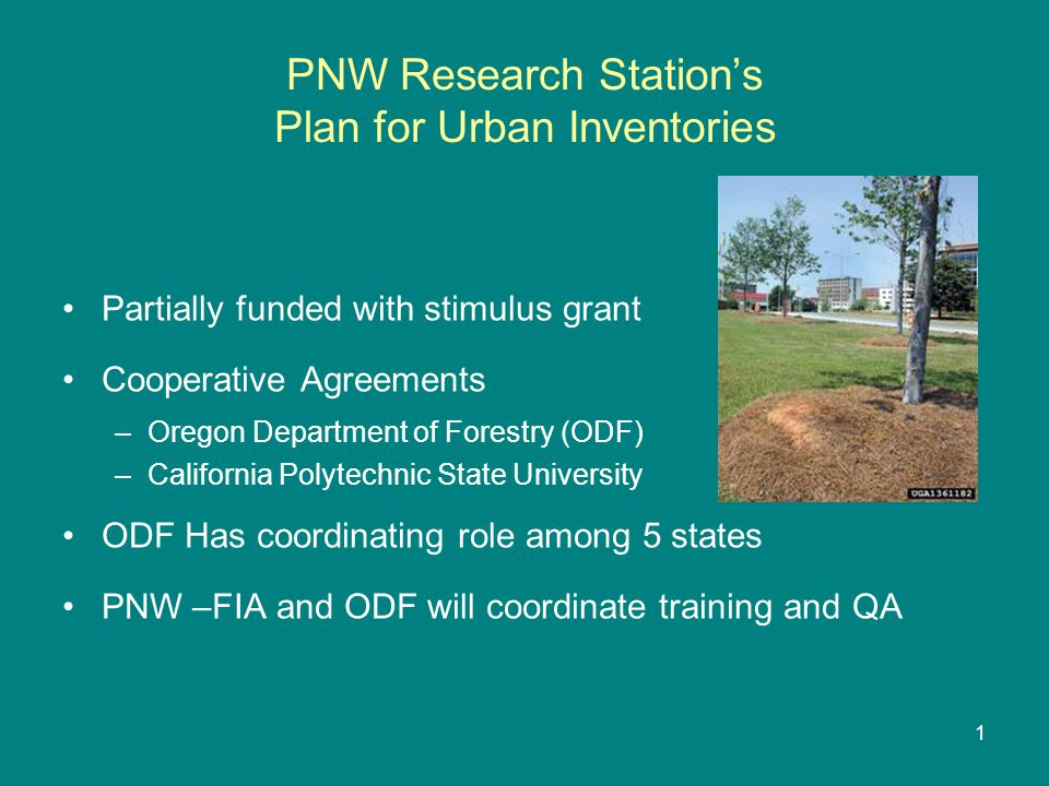 RM Research Station's -FIA support of New Mexico Inventory New Mexico received stimulus funding to collect data on P2 plots in 3 out of 10 panels Additional FIA support role –Pre-field logistics –Measure all P3 plots –QA procedures on P2 plots –Collect 1 additional P2/P3 panel 12