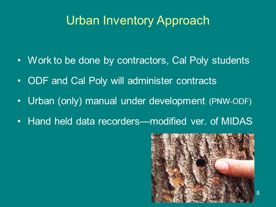 Urban Inventory Approach Work to be done by contractors, Cal Poly students ODF and Cal Poly will administer contracts Urban (only) manual under development (PNW-ODF) Hand held data recorders—modified ver.