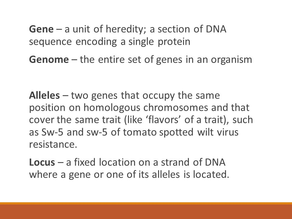 Gene – a unit of heredity; a section of DNA sequence encoding a single protein Genome – the entire set of genes in an organism Alleles – two genes that occupy the same position on homologous chromosomes and that cover the same trait (like 'flavors' of a trait), such as Sw-5 and sw-5 of tomato spotted wilt virus resistance.