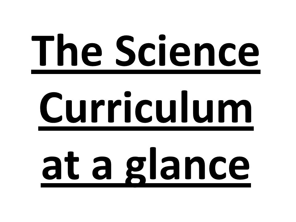 The Science Curriculum at a glance