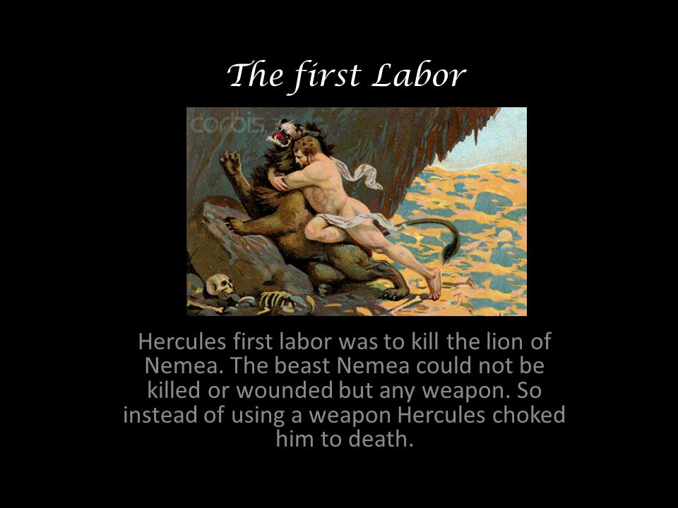 The first Labor Hercules first labor was to kill the lion of Nemea.