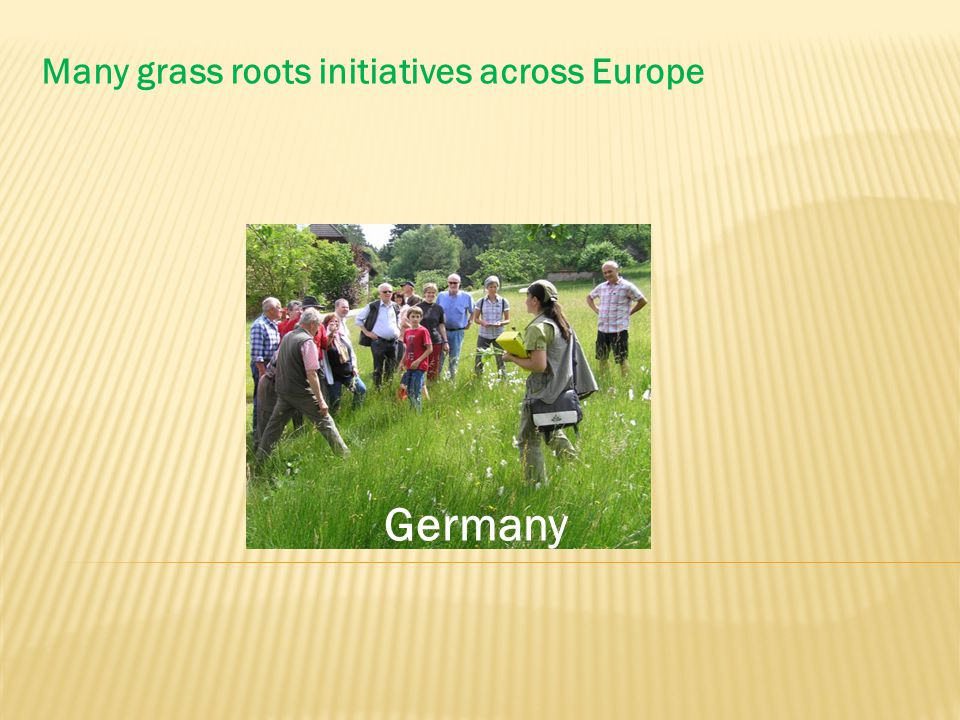 Many grass roots initiatives across Europe Germany