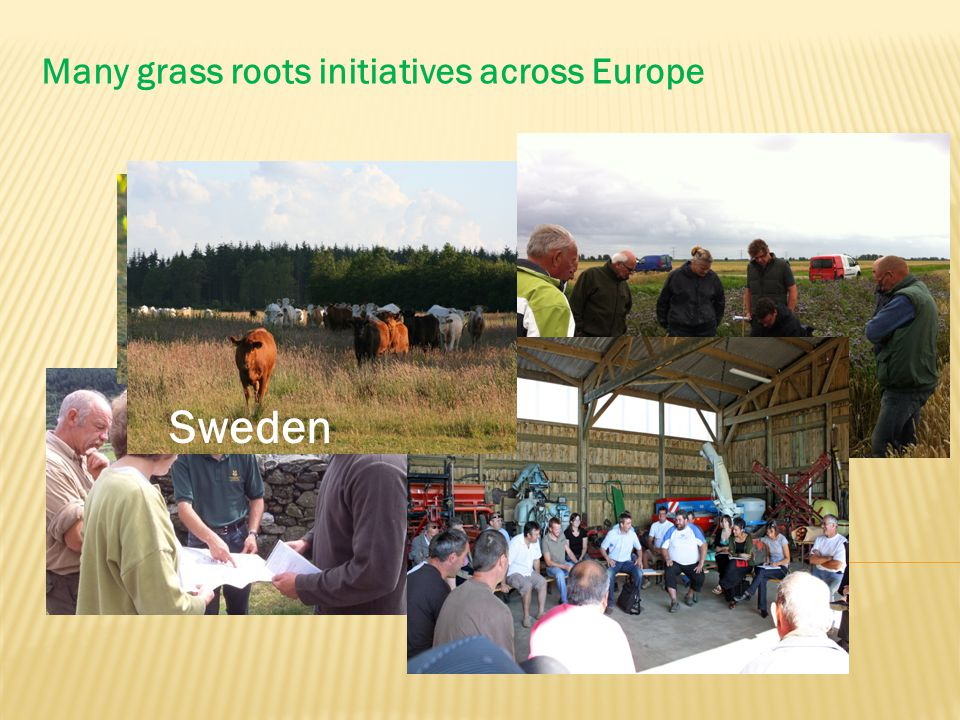 Many grass roots initiatives across Europe Sweden