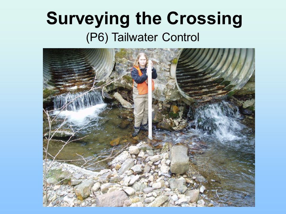 Surveying the Crossing (P6) Tailwater Control
