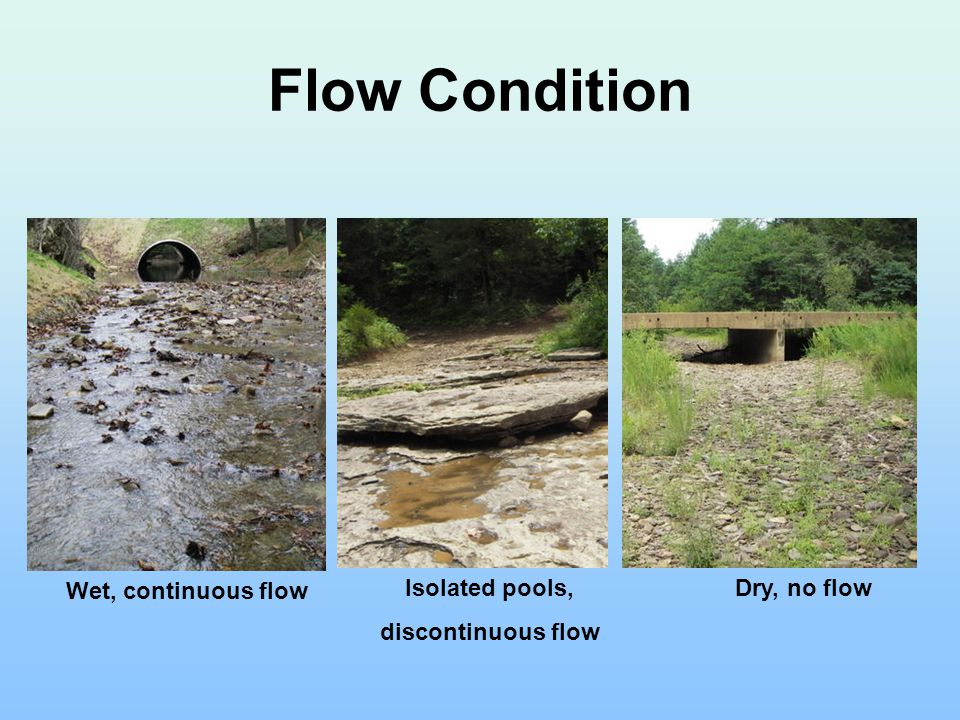 Flow Condition Isolated pools, discontinuous flow Dry, no flow Wet, continuous flow