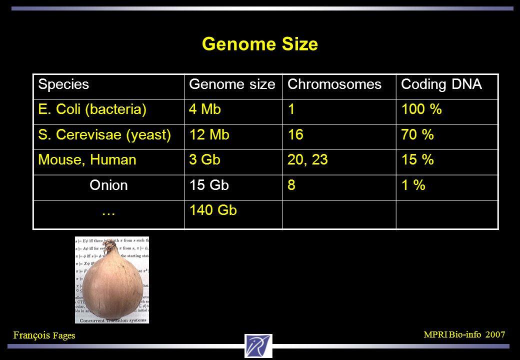 François Fages MPRI Bio-info 2007 Genome Size SpeciesGenome sizeChromosomesCoding DNA E.