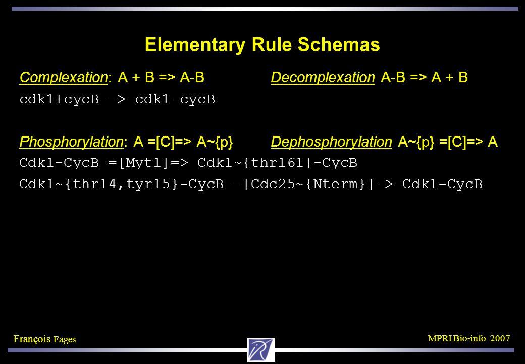 François Fages MPRI Bio-info 2007 Elementary Rule Schemas Complexation: A + B => A-B Decomplexation A-B => A + B cdk1+cycB => cdk1–cycB Phosphorylation: A =[C]=> A~{p} Dephosphorylation A~{p} =[C]=> A Cdk1-CycB =[Myt1]=> Cdk1~{thr161}-CycB Cdk1~{thr14,tyr15}-CycB =[Cdc25~{Nterm}]=> Cdk1-CycB