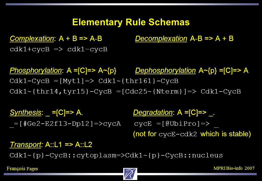 François Fages MPRI Bio-info 2007 Elementary Rule Schemas Complexation: A + B => A-B Decomplexation A-B => A + B cdk1+cycB => cdk1–cycB Phosphorylation: A =[C]=> A~{p} Dephosphorylation A~{p} =[C]=> A Cdk1-CycB =[Myt1]=> Cdk1~{thr161}-CycB Cdk1~{thr14,tyr15}-CycB =[Cdc25~{Nterm}]=> Cdk1-CycB Synthesis: _ =[C]=> A.