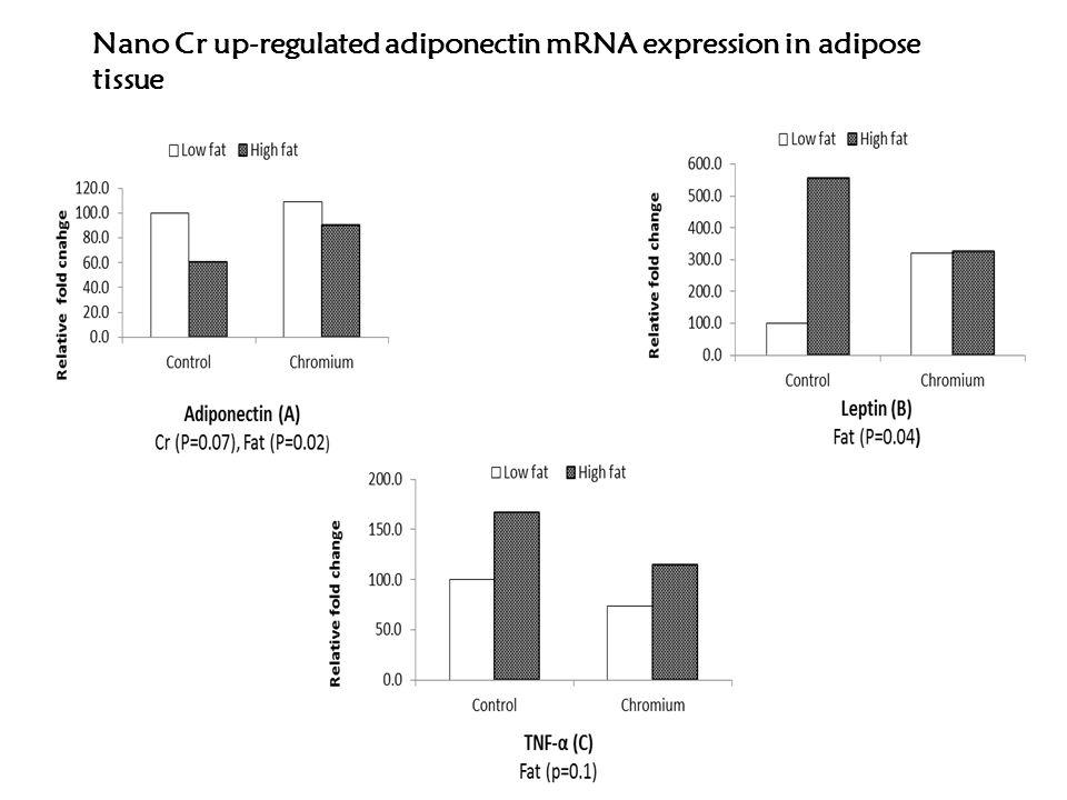 Control vs. Cr (P<0.05) Nano-Cr improves insulin sensitivity