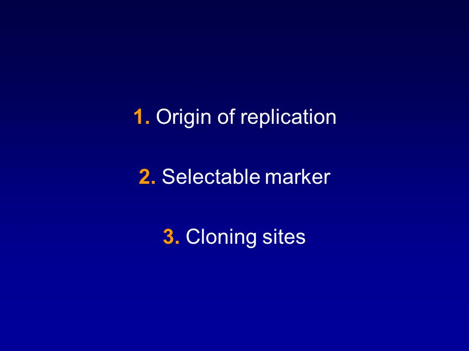 1. Origin of replication 2. Selectable marker 3. Cloning sites