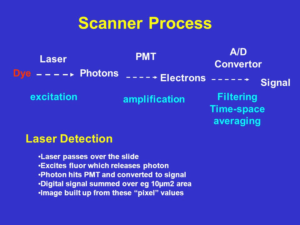 Scanner Process DyePhotons Electrons Signal Laser PMT A/D Convertor excitation amplification Filtering Time-space averaging Laser Detection Laser passes over the slide Excites fluor which releases photon Photon hits PMT and converted to signal Digital signal summed over eg 10µm2 area Image built up from these pixel values