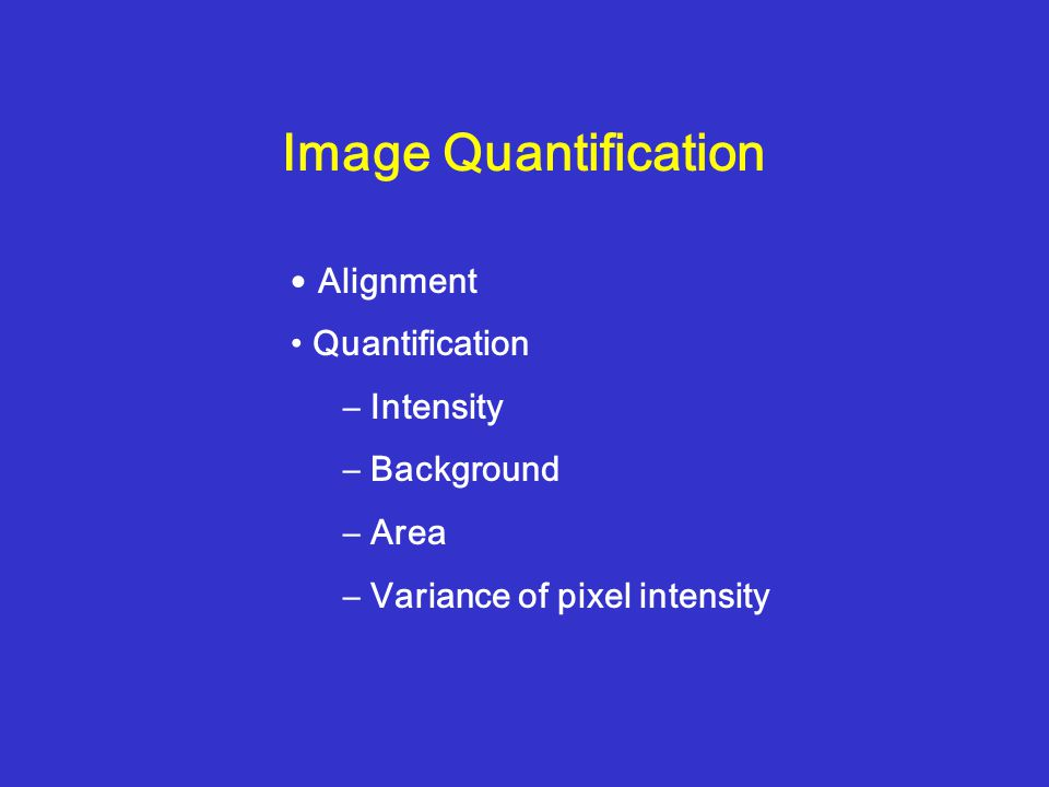 Image Quantification Alignment Quantification – Intensity – Background – Area – Variance of pixel intensity