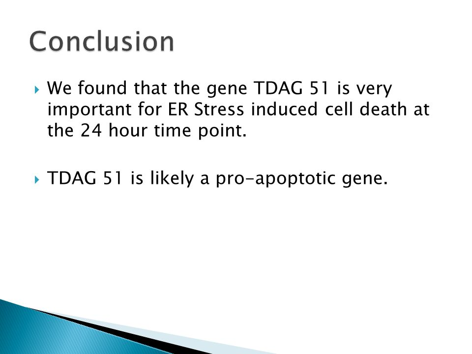  We found that the gene TDAG 51 is very important for ER Stress induced cell death at the 24 hour time point.