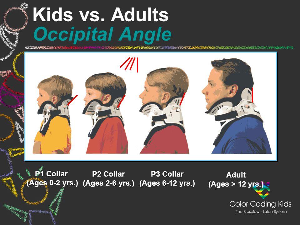 P1 Collar (Ages 0-2 yrs.) P2 Collar (Ages 2-6 yrs.) P3 Collar (Ages 6-12 yrs.) Adult (Ages > 12 yrs.) Kids vs. Adults Occipital Angle