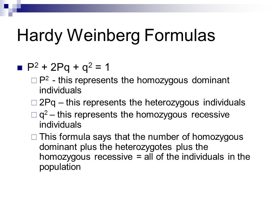 Hardy Weinberg Formulas P 2 + 2Pq + q 2 = 1  P 2 - this represents the homozygous dominant individuals  2Pq – this represents the heterozygous individuals  q 2 – this represents the homozygous recessive individuals  This formula says that the number of homozygous dominant plus the heterozygotes plus the homozygous recessive = all of the individuals in the population