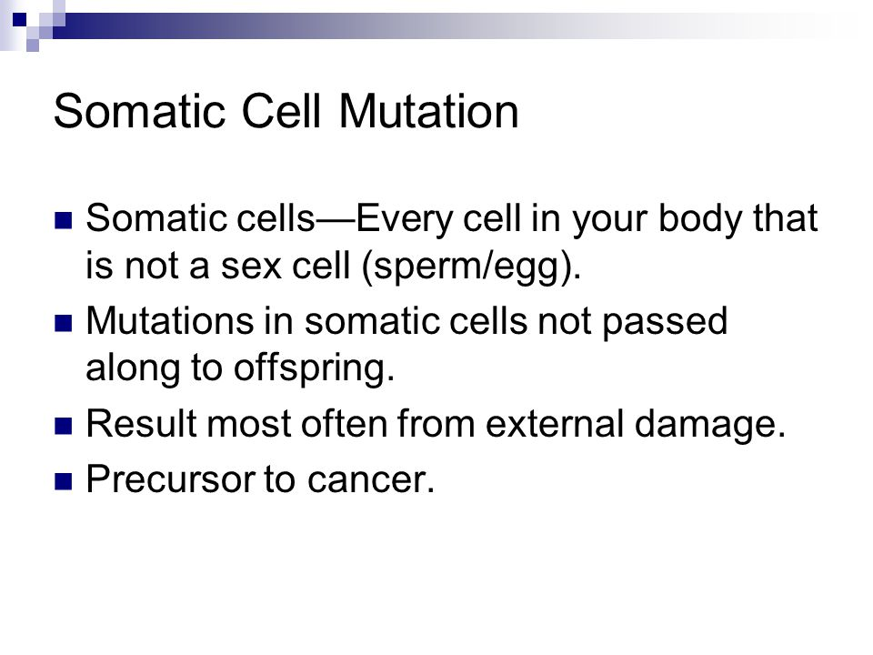 Somatic Cell Mutation Somatic cells—Every cell in your body that is not a sex cell (sperm/egg).