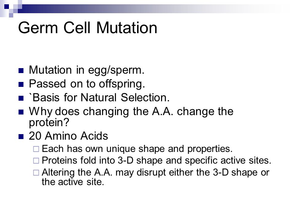 Causes Of Mutations Internal  Defective DNA polymerase.