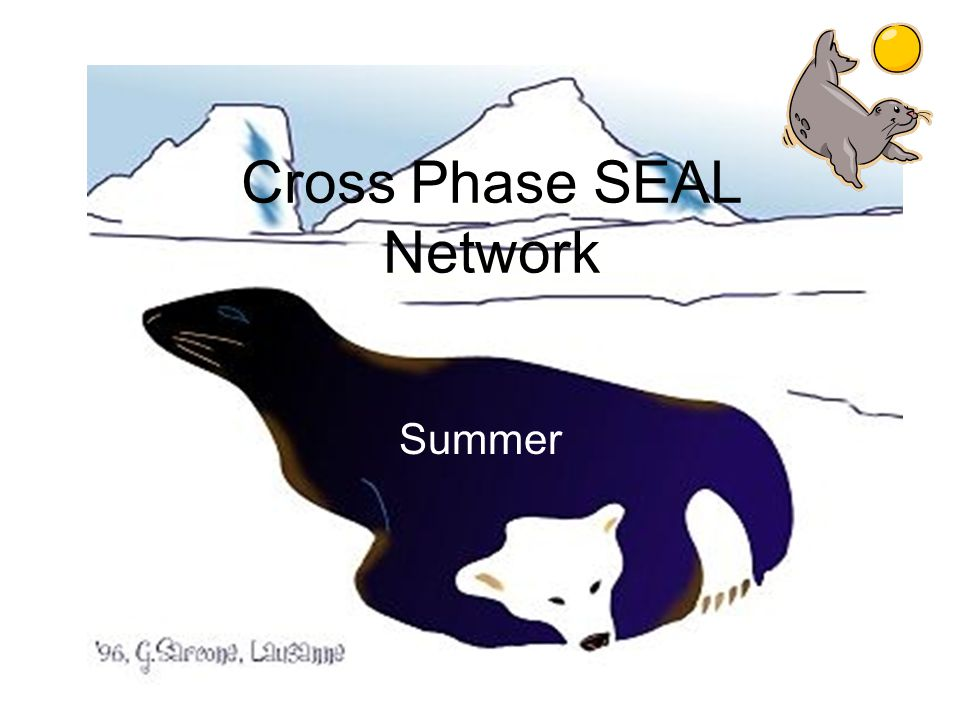 Cross Phase SEAL Network Summer