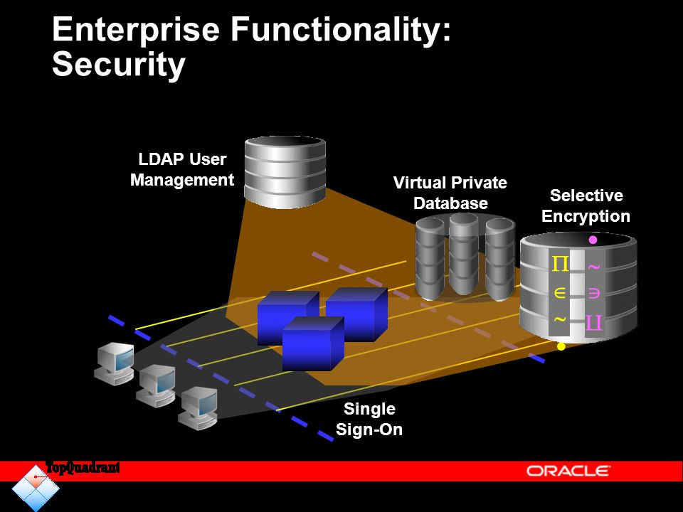 Enterprise Functionality: Security LDAP User Management Selective Encryption   Virtual Private Database Single Sign-On